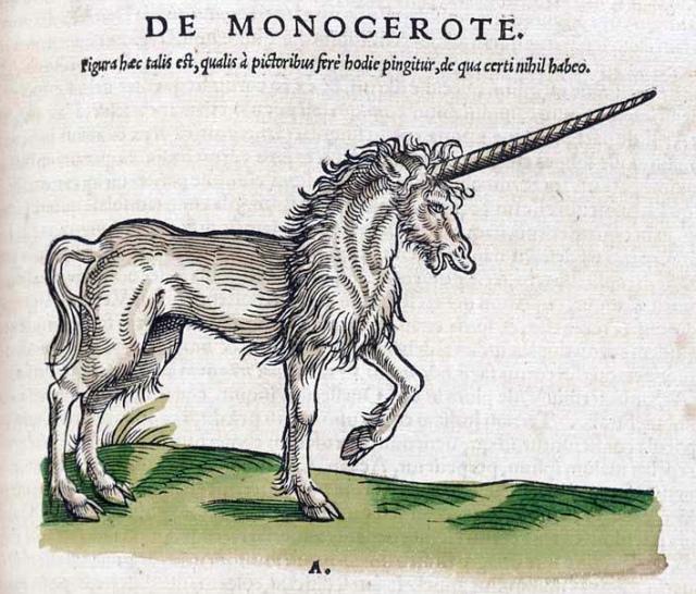 unicorn_013
